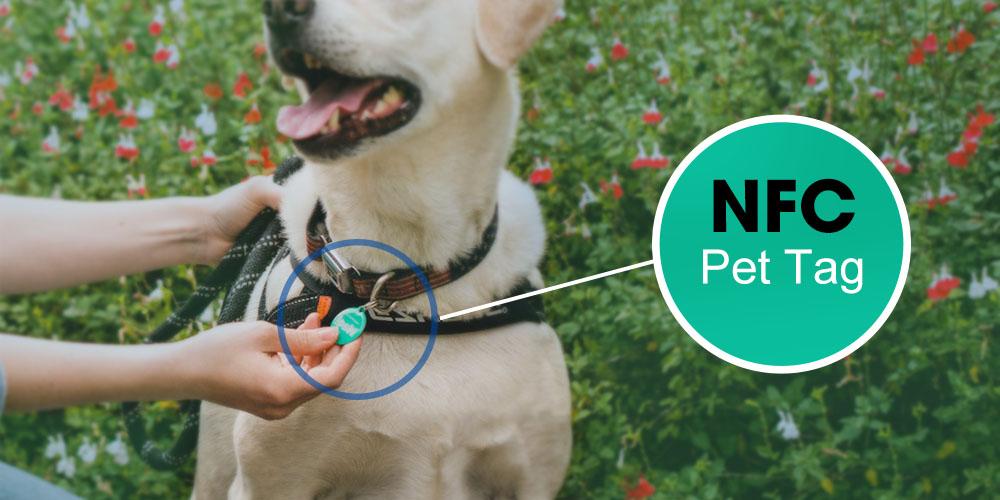 Verwalten Sie Ihre Haustiere mit NFC-Tags